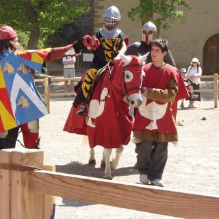 Lys et Lion 1463
